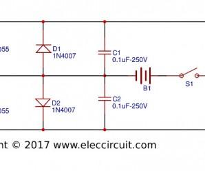 Electric Fish Shocker Circuits