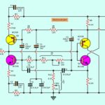 The twin-T complementary amplifier circuit with filter selector
