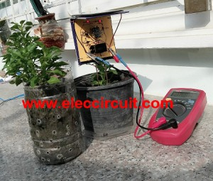 we test Simple solar plant watering alarm it works very well