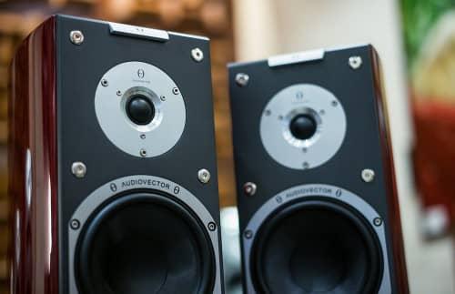 two speaker mono amplifier