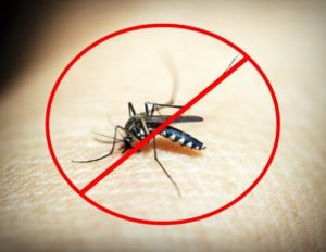 Mosquito repellent circuit project