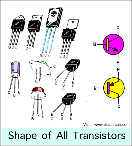 shape of all transistors